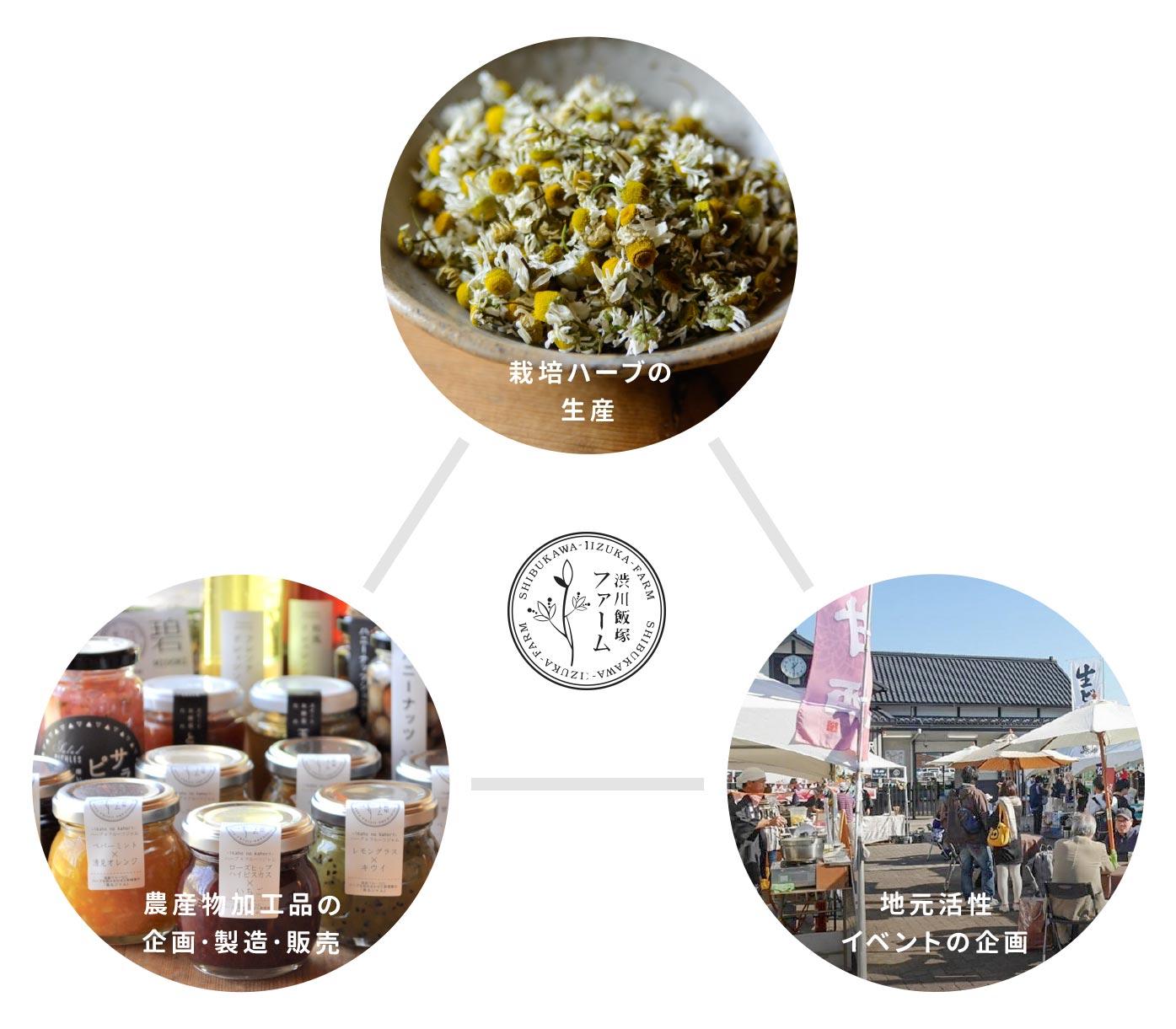 栽培ハーブの生産/農産物加工品の企画・製造・販売/地元活性イベントの企画|事業内容(図)|渋川飯塚ファーム